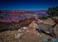 AZ, Arizona, Cats, Grand Canyon, Tourism, Travel, Traveling with a cat, U.S., USA, United States, animals, leashed cat, on a leash, phoDOGraphy, traveling cat, traveling with cats